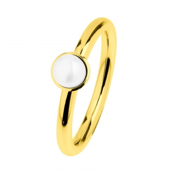Ernstes Design evia-Ring R493